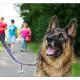 Mogi Hondenfotografie, hondenfotograaf, Duitse Herder