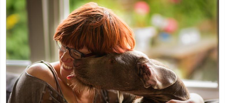 Mogi Hondenfotografie, hondenfotograaf, Monique Gidding