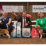 Mogi Hondenfotografie, Beagle, Clubmatch Beagle Club Nederland, kampioenen Beagle Clubmatch 2013