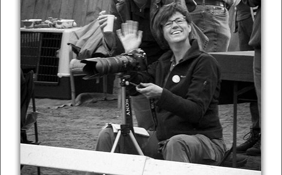 Mogi Hondenfotograaf, Monique Gidding, hondenfotograaf