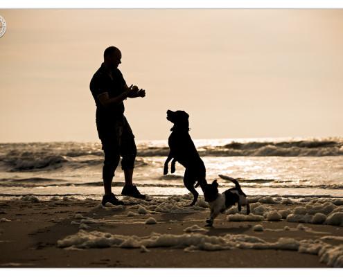 Strandspel door Mogi Hondenfotografie