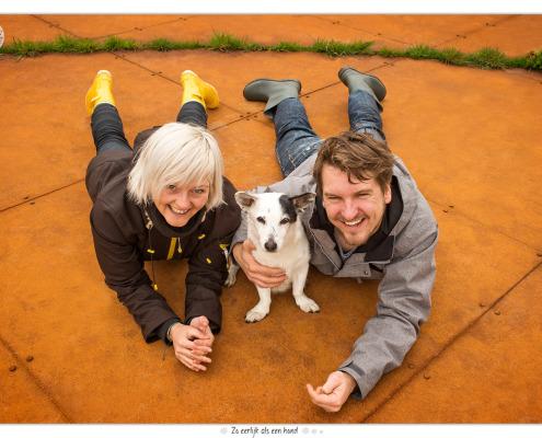 Jules, kruising Corgi - Jack Russel - door Mogi Hondenfotografie