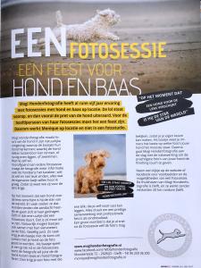 artikel HondenZo