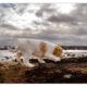 Puppy kruising door Mogi Hondenfotografie